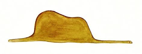 Küçük Prens'in Fil Yutmuş Boa Yılanı