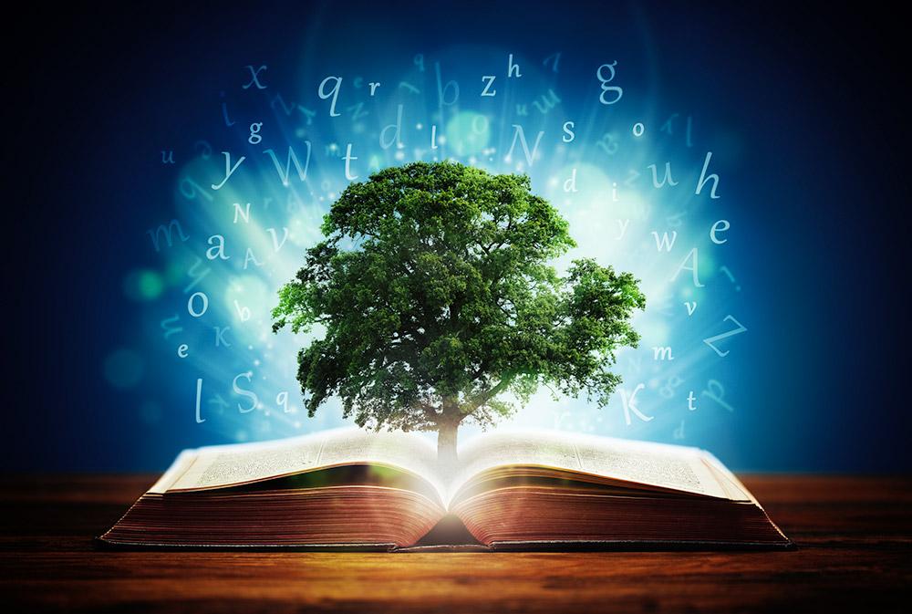 """İlm-i Evvel'in, """"önceden bilinme"""" durumunun en kadim iki sembolü: Ağaç ve Kitap"""