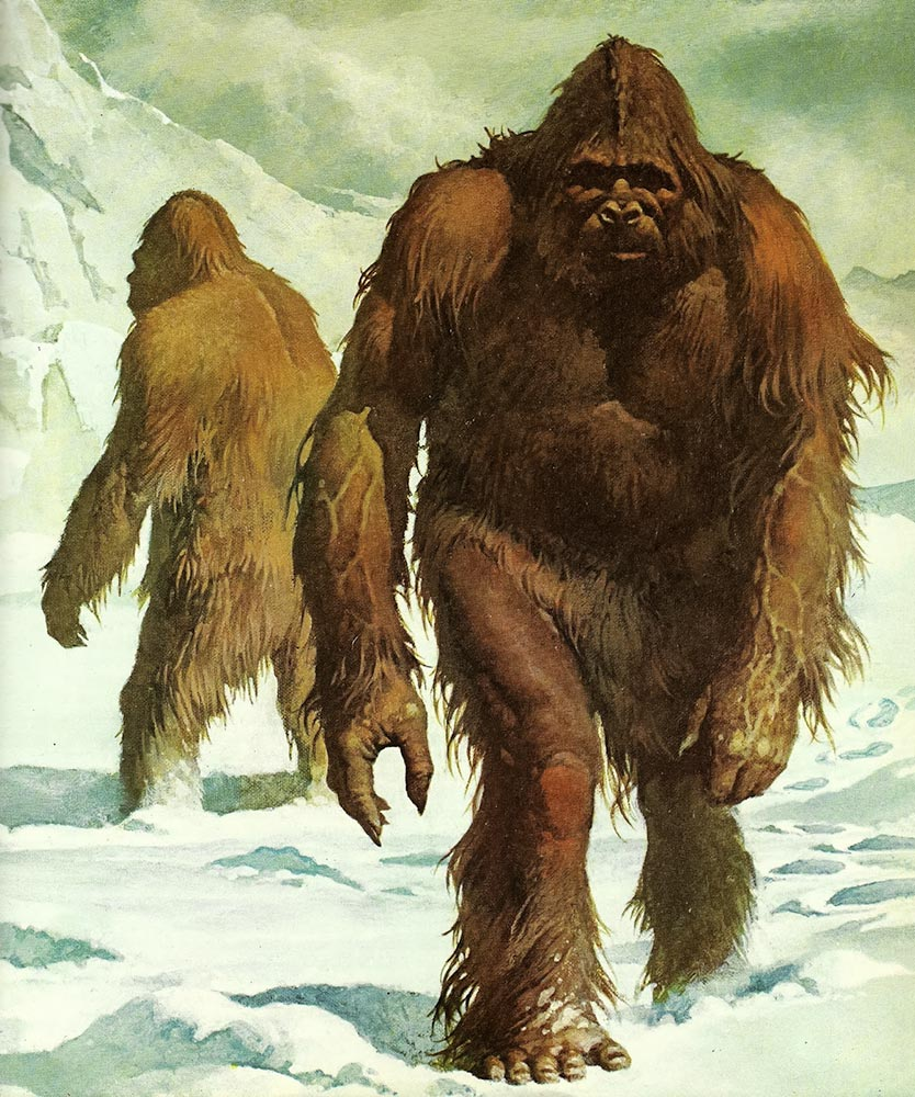 Bigfoot / Kocaayak